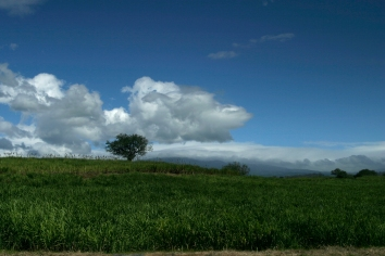 The Costa Rican countryside on Route 3 from San Jose to Puntarenas. 2007