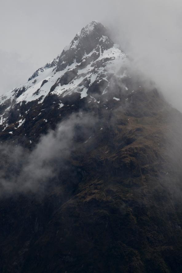 Fiordland Natioanal Park, New Zealand.
