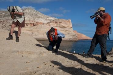 7. San Jose Fossils